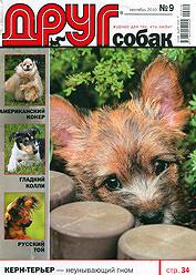 Друг собак 2010